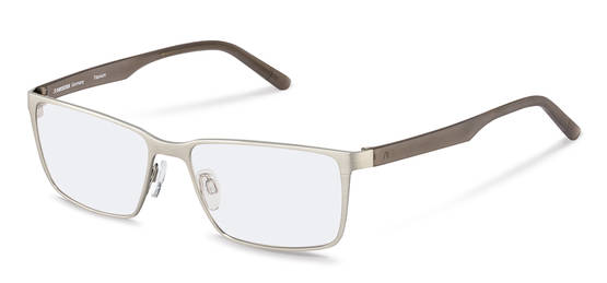 Rodenstock-Bril-R7075-silver/grey